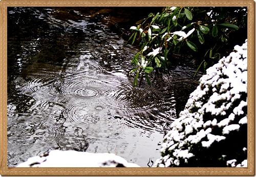水の輪、日光