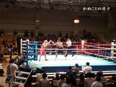 P1170716-boxing.jpg
