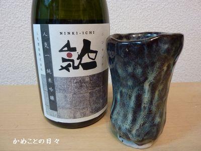 P1180036-sake.jpg