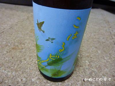 P1180953-beer.jpg