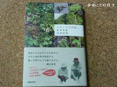 P1190202-book.jpg
