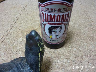 P1190438-beer.jpg