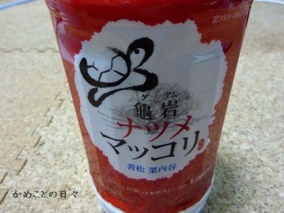 P1190757-sake.jpg