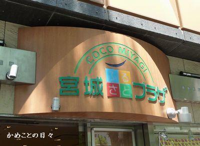 P1190861-miyagi.jpg