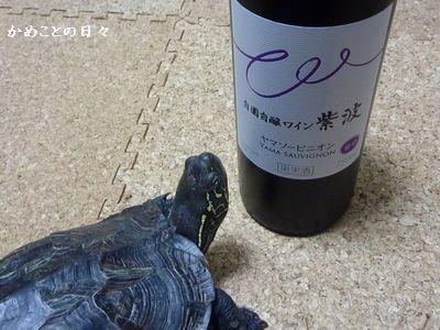 P1200829-wine.jpg
