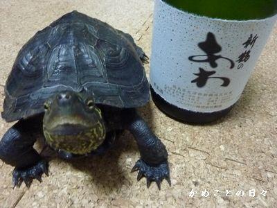 P1210789-wine.jpg