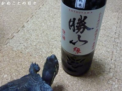 P1220266-sake.jpg