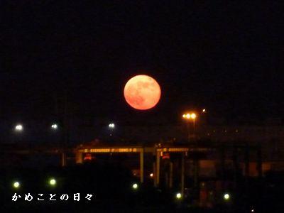 P1240123-moon.jpg