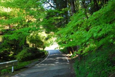塩田に抜ける山道