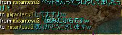 1_20100328105501.jpg
