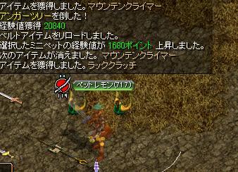 7_20100125031749.jpg