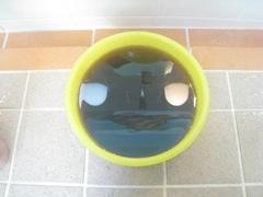 照の湯黒湯