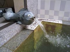 トップメガ湯口