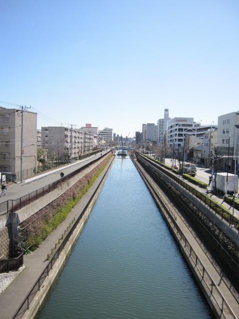 柳島歩道橋からの景色