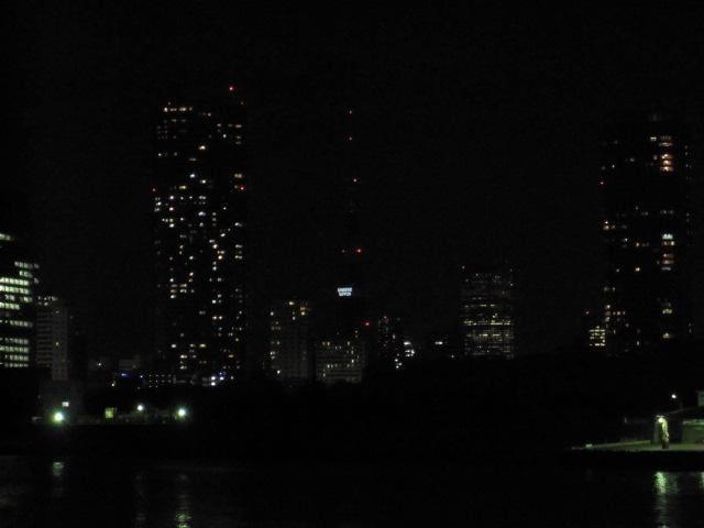 ズームアップ 真ん中に東京タワー