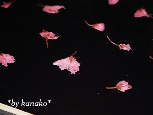 ★★★桜のロールケーキ1