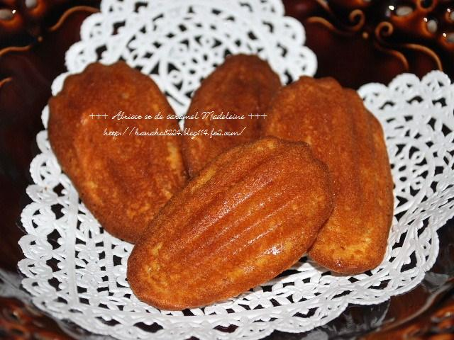 ●●●杏とキャラメルのマドレーヌ16