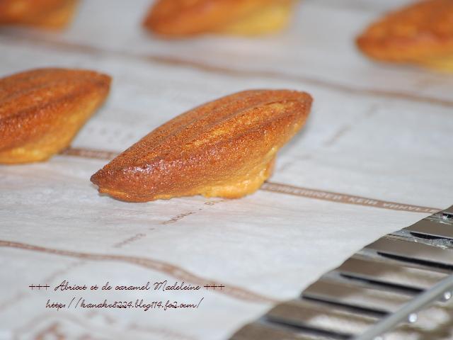 ●●●杏とキャラメルのマドレーヌ21