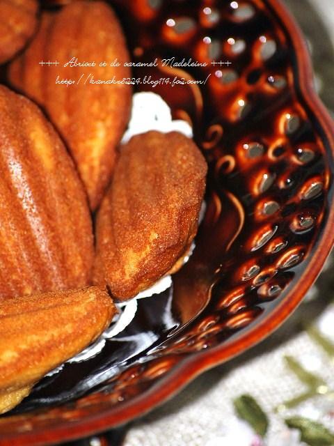 ●●●杏とキャラメルのマドレーヌ22