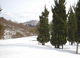 雪解け 藤倉・仁別 (10)
