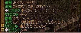 RedStone 08.11.21[47]