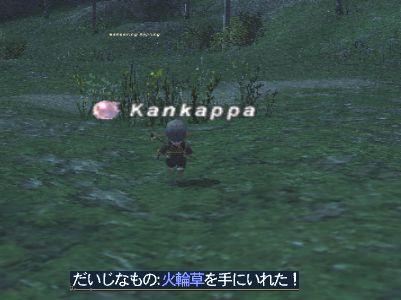 2008_11_20_21_18_04.jpg