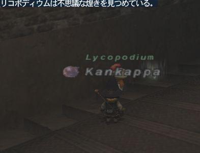 2008_11_26_20_17_32.jpg