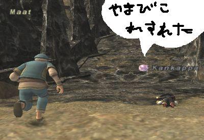 2008_12_06_20_30_05.jpg