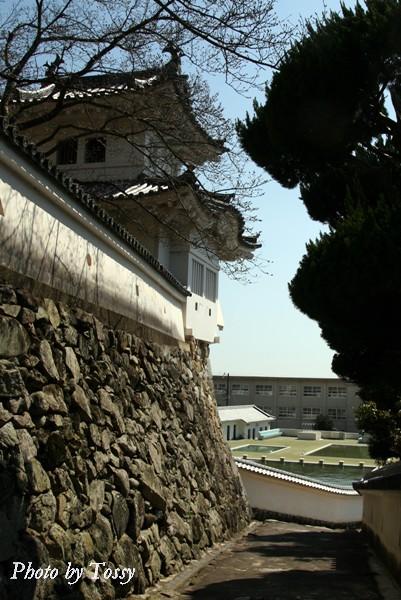 石垣と土塀のうち