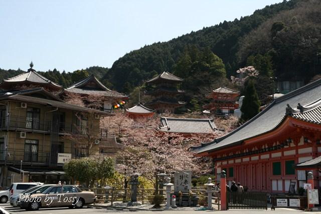 壷阪寺全景