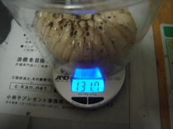 DSC09843.jpg