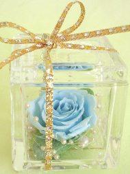 ブルー薔薇1