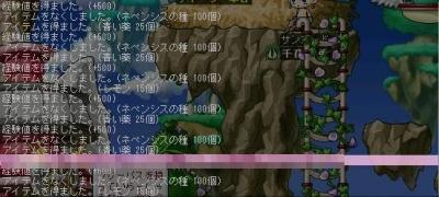 Maple0000060.jpg