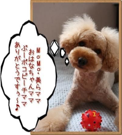 karubi_convert_20090929225102.jpg