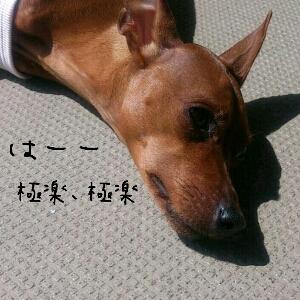 fc2blog_201204041330346f3.jpg