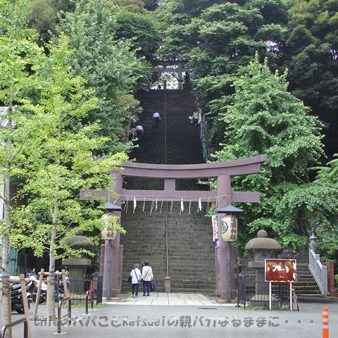 愛宕神社男坂(出世の石段)2009-06-23