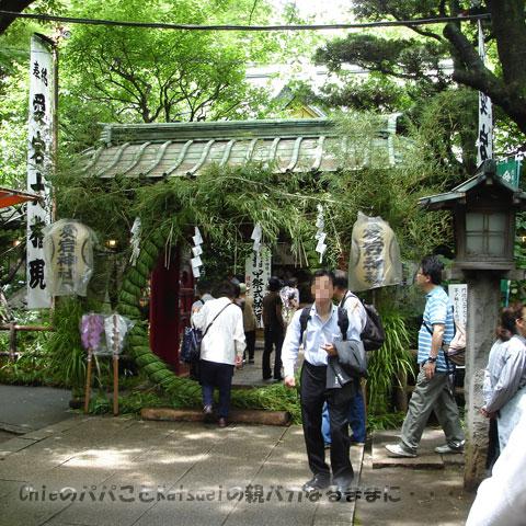 愛宕神社の茅の輪2009-06-23