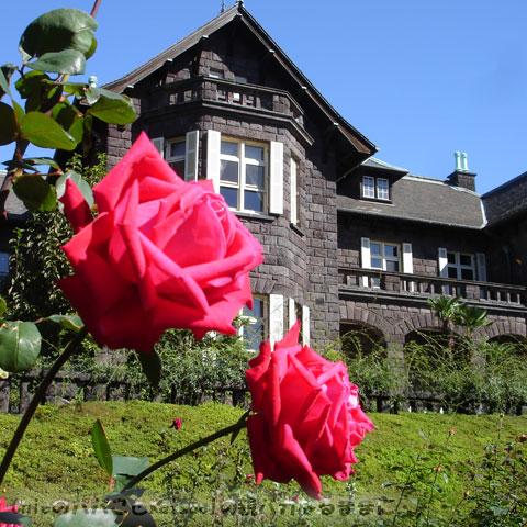 旧古河庭園 クリスチャン・ディオール 2009-10-27