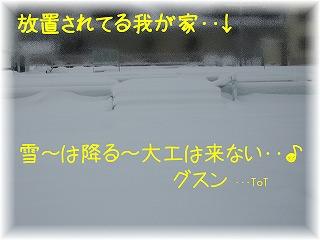IMG_3747_20090113140146.jpg