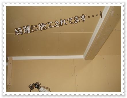 IMG_4137.jpg