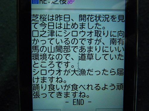 IMGP1603.jpg