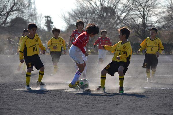武蔵野11