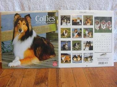コリーカレンダー