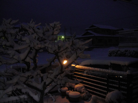 雪の朝 1002120005