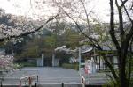 金竜寺山門