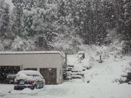 snowing3