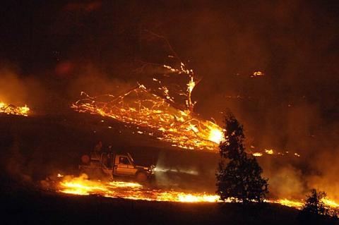 bushfire5