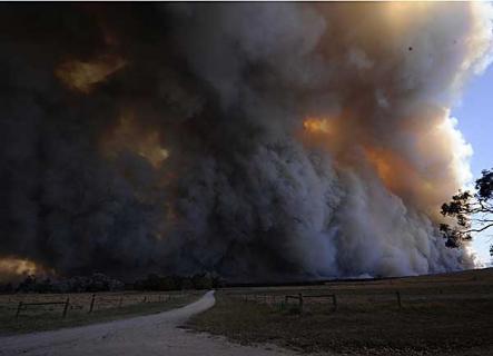 bushfire11