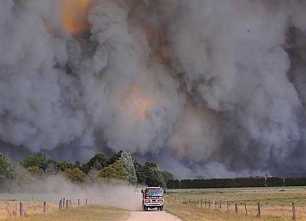 bushfire13