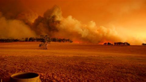 bushfire14